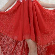 画像13: 【再入荷・新色追加】フラワー刺繍ビジュー装飾シフォン&レーステールカットロングドレス キャバドレス パーティードレス (13)