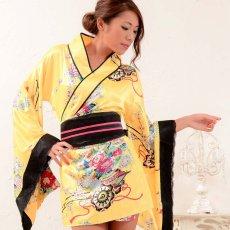 画像15: 和柄ミニ着物ドレス 和柄 衣装 ダンス よさこい 花魁 コスプレ キャバドレス (15)
