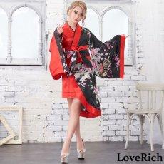画像11: ツートンカラー孔雀柄着物ドレス 和柄 衣装 ダンス よさこい 花魁 コスプレ キャバドレス (11)