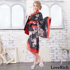 画像12: ツートンカラー孔雀柄着物ドレス 和柄 衣装 ダンス よさこい 花魁 コスプレ キャバドレス (12)